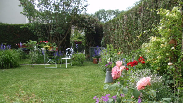 Jardin conseil pour le jardinage l 39 am nagement et la for Conseil pour le jardin